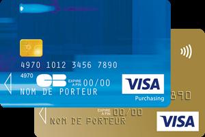 carte visa france